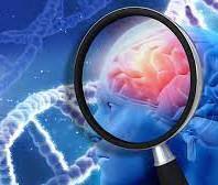 Tichý zabijak: Demencia ohrozuje vyspelí svet. Ako pracovať s ľuďmi s demenciou