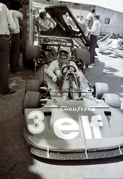 "071-Ronnie Petersen, Tyrrell P34, F1 Sweden 1977 18""x27"""