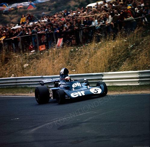 """008-F1 Jackie Stewart Tyrrell 006 Germany 1973  36""""x36"""""""