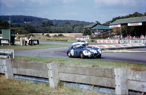 """005-Dan Gurney Shelby Daytona 1964  18""""x27"""""""