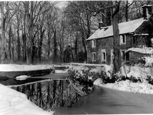 Cottage in decline