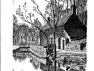 C.F.Tunncliffe illustration