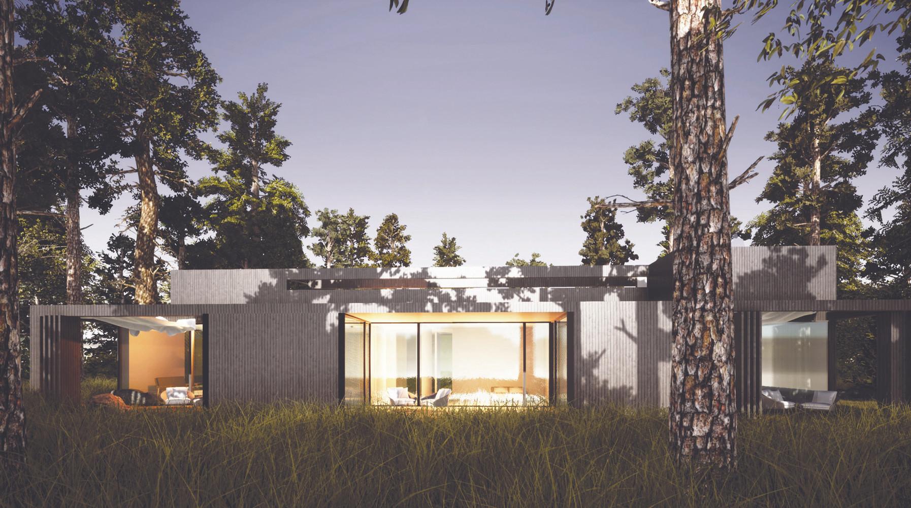 Wizualizacja zewnętrzna - białe drewno