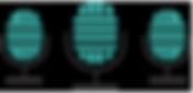 Indepenent Music Website