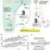 大規模メタボロームの品質評価/Quality Assessment of large-scale metabolomics