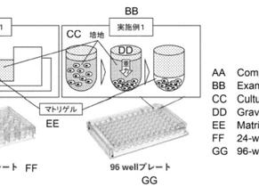 福田先生が特許を取得されました/US patent obtained by Fukuda