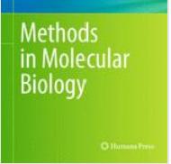 酒井先生のヒト人工多能性幹細胞に関するプロトコルが出版されました / Dr.Sakai's protocol for hiPSCs has been published