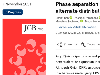 C9orf72遺伝子に関する論文が「Journal of Cell Biology」に掲載されました / A paper on the C9orf72 gene was published