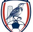Larkview FC Club Logo.jpeg