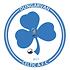 dungarvan celtic logo.png