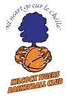 Kilcock Tigers - Club Logo.jpg