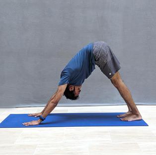 Hatha Yoga All Levels Class