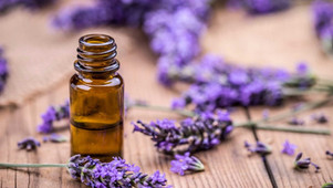 Don't Leave Without Lavender