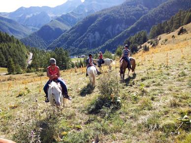 """"""" Je pense souvent à ce merveilleux été dans le Queyras avec vos chevaux """" Sophie Hoar"""