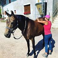 Emilie de Tessières ostéopathe stretching chevaux et chiens