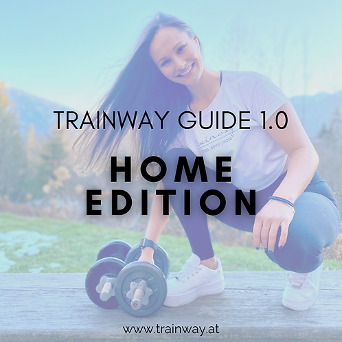 TRAINWAY Guide 1.0 - HOME EDITION