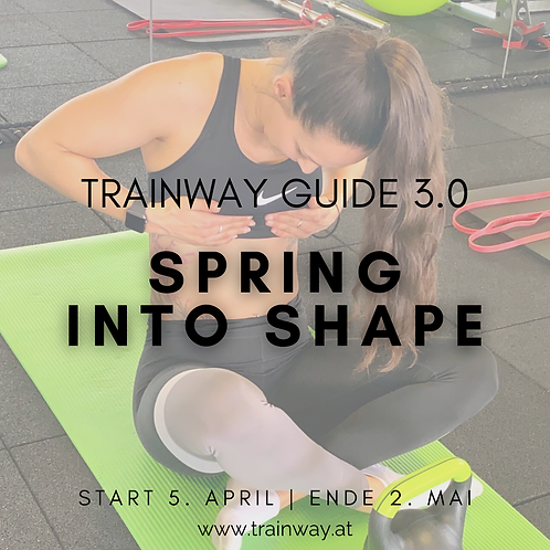 TRAINWAY Guide 3.0 - SPRING INTO SHAPE