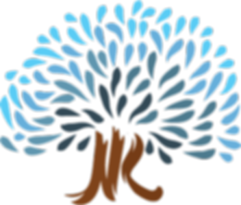 logo_NK.png