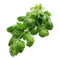 GREEN CHARD.png