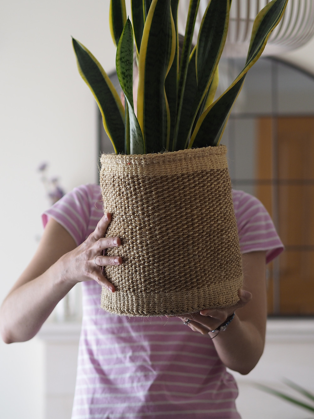 Hand woven basket planter in hands