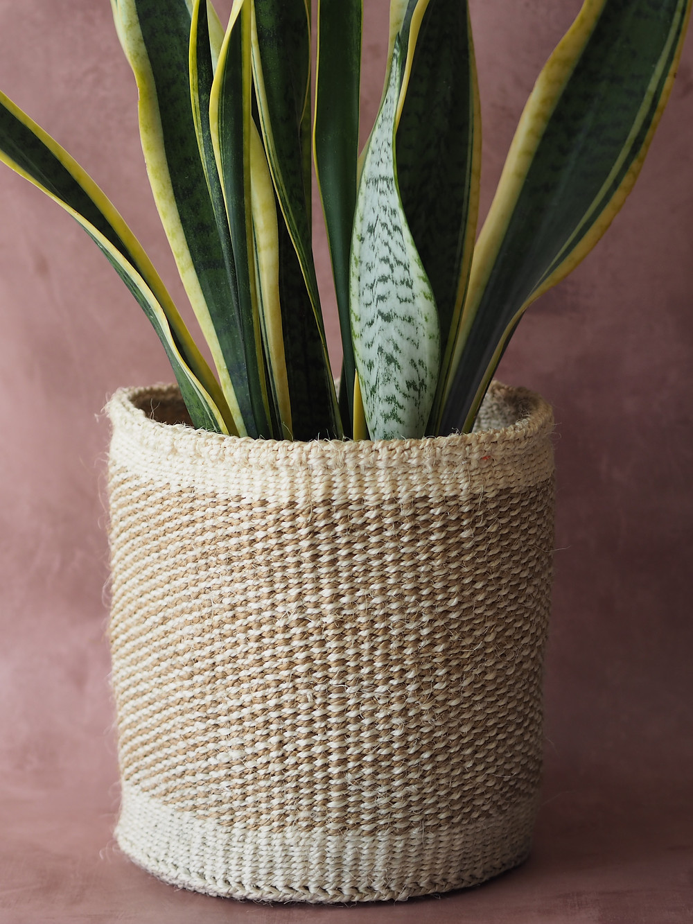 hand woven african basket available to buy at Wild Home Online on Etsy