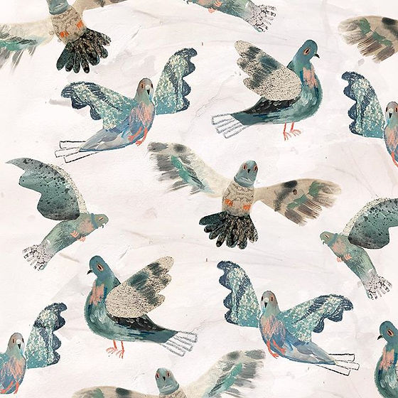 Pidgeon Pattern 2019