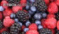 thumbnail_fitbox-nutrition.jpg