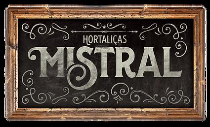 placa_mistral.png