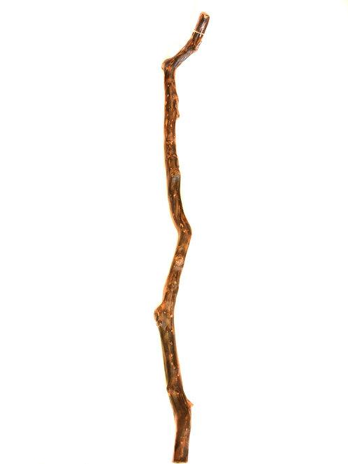Tribal Chief Stick