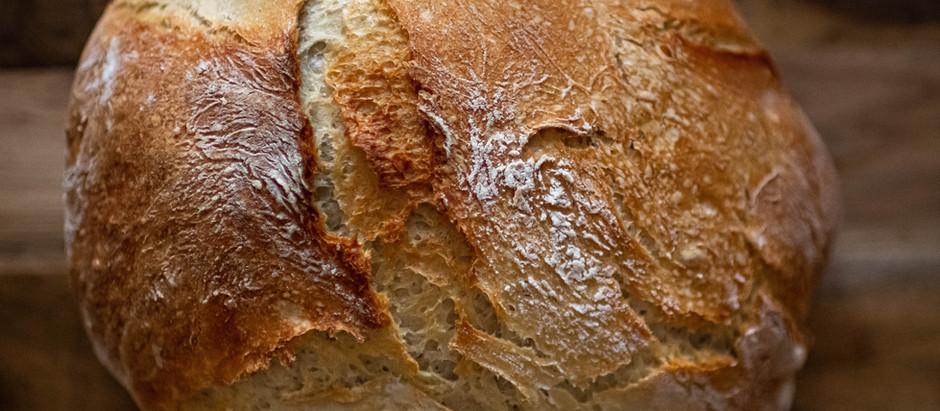 Rejoicing in the bread