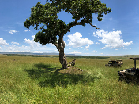 Stories of Kenya: part 1