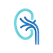 nephrology-icon-c.png