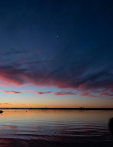 Moonrise Venus Bay