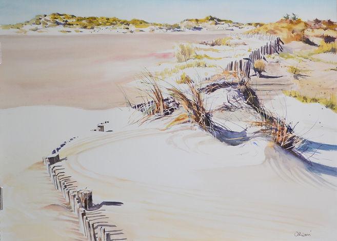 Ganivelles sur la plage.JPG