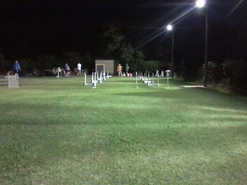 Flyball field at night.jpg