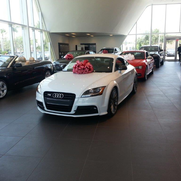 AUDI VW DEALERSHIP