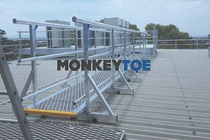 Monkeytoe 5.jpg