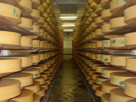 Cheese Caves and Food Surpluses: Why the U.S. Government currently stores 1.4 billion lbs of cheese