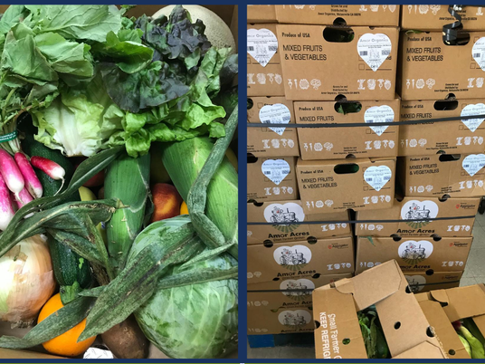 The Farmlink Project's First School Delivery!