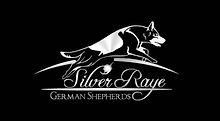 SilverRaye.jpg