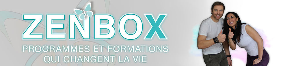 web-zenbox1-1280x300.jpg