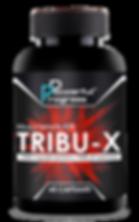 TRIBU-X.png