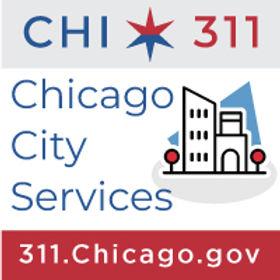 CHI311website.jpg
