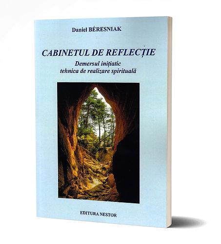 Daniel Beresniak, Cabinetul de reflectie