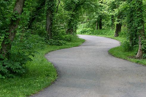 Woods Path.jpg