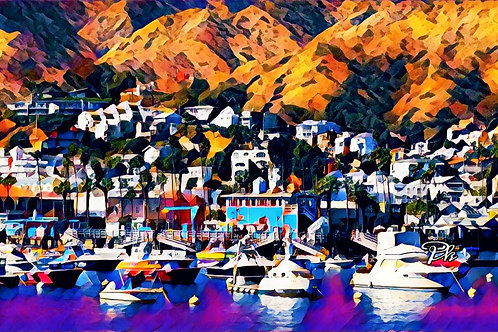 Catalina Island Village