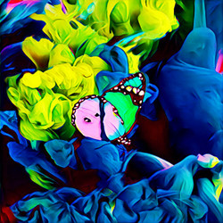 Pink & Teal Butterfly