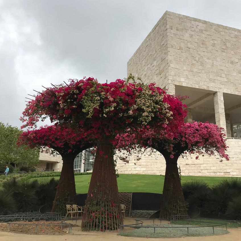 Getty museum garden  - 1 (1)