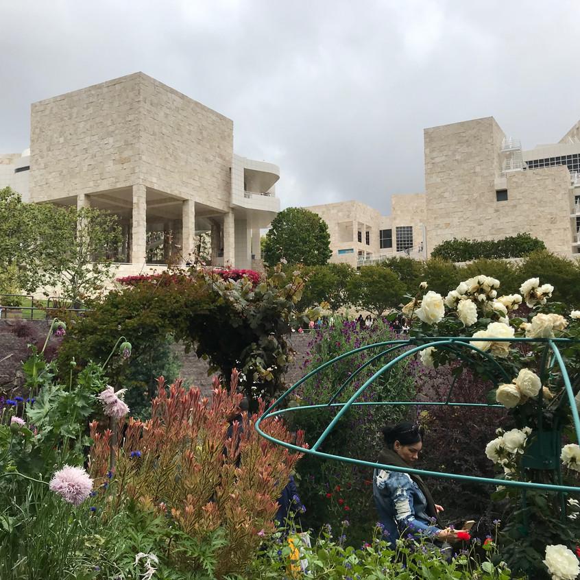 Getty museum garden - 1