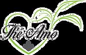 thé amo logo - Elisabeth Rios.png